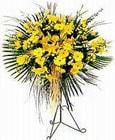 Giresun çiçek siparişi vermek  Sari kazablanka Ferforje