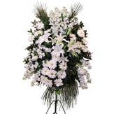Giresun çiçek gönderme  Ferforje beyaz renkli kazablanka