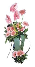 Giresun internetten çiçek siparişi  Pembe Antoryum Harikalar Rüyasi