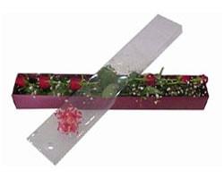 Giresun ucuz çiçek gönder   6 adet kirmizi gül kutu içinde