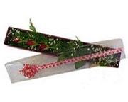 Giresun kaliteli taze ve ucuz çiçekler  3 adet gül.kutu yaldizlidir.