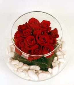 Cam fanusta 11 adet kırmızı gül  Giresun anneler günü çiçek yolla