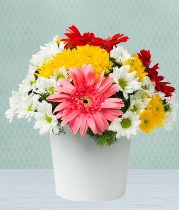 Seramik Vazoda Gelbera ve Papatya  Giresun anneler günü çiçek yolla