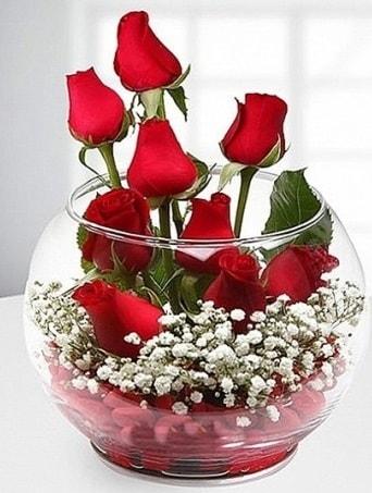 Kırmızı Mutluluk fanusta 9 kırmızı gül  Giresun yurtiçi ve yurtdışı çiçek siparişi