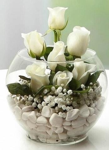 Beyaz Mutluluk 9 beyaz gül fanusta  Giresun yurtiçi ve yurtdışı çiçek siparişi