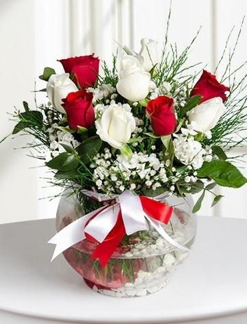 Aşk Küresi  5 beyaz 5 kırmızı gül fanusta  Giresun online çiçekçi , çiçek siparişi