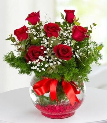 fanus Vazoda 7 Gül  Giresun çiçek servisi , çiçekçi adresleri