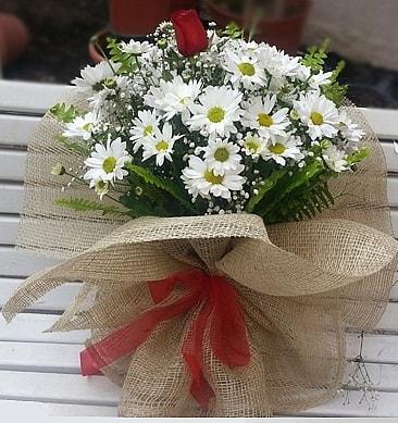 Papatya 1 adet kırmızı gül buketi  Giresun çiçek yolla , çiçek gönder , çiçekçi