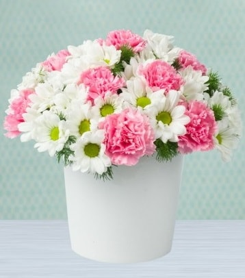 Seramik vazoda papatya ve kır çiçekleri  Giresun yurtiçi ve yurtdışı çiçek siparişi