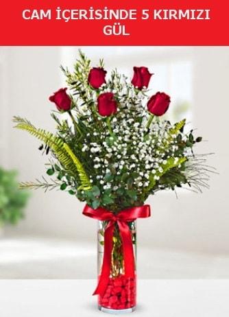 Cam içerisinde 5 adet kırmızı gül  Giresun yurtiçi ve yurtdışı çiçek siparişi