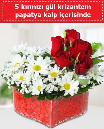 mika kalp içerisinde 5 kırmızı gül papatya  Giresun anneler günü çiçek yolla