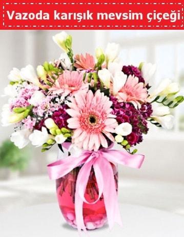 Vazoda karışık mevsim çiçeği  Giresun çiçek servisi , çiçekçi adresleri