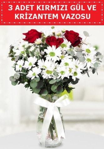 3 kırmızı gül ve camda krizantem çiçekleri  Giresun anneler günü çiçek yolla