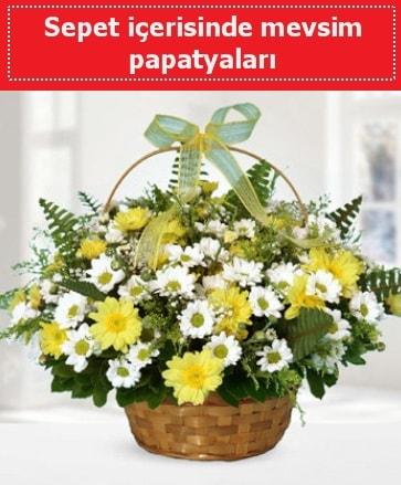 Sepet içerisinde mevsim papatyaları  Giresun çiçek mağazası , çiçekçi adresleri
