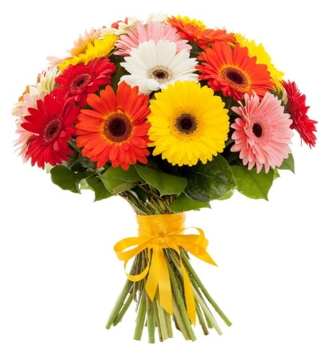 Gerbera demeti buketi  Giresun çiçek online çiçek siparişi