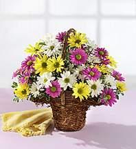 Giresun çiçek yolla , çiçek gönder , çiçekçi   Mevsim çiçekleri sepeti